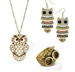 owl-acc1